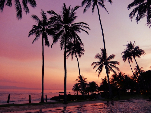 Bali9_1500px.jpg