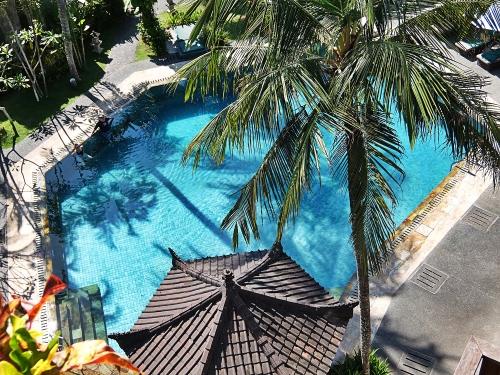 Bali81_1500px.jpg