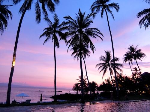 Bali93_1500px.jpg