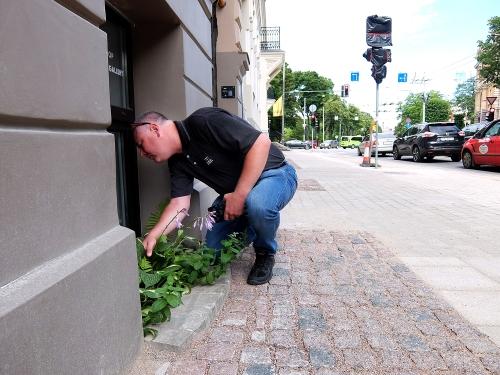 Riga31_1500px